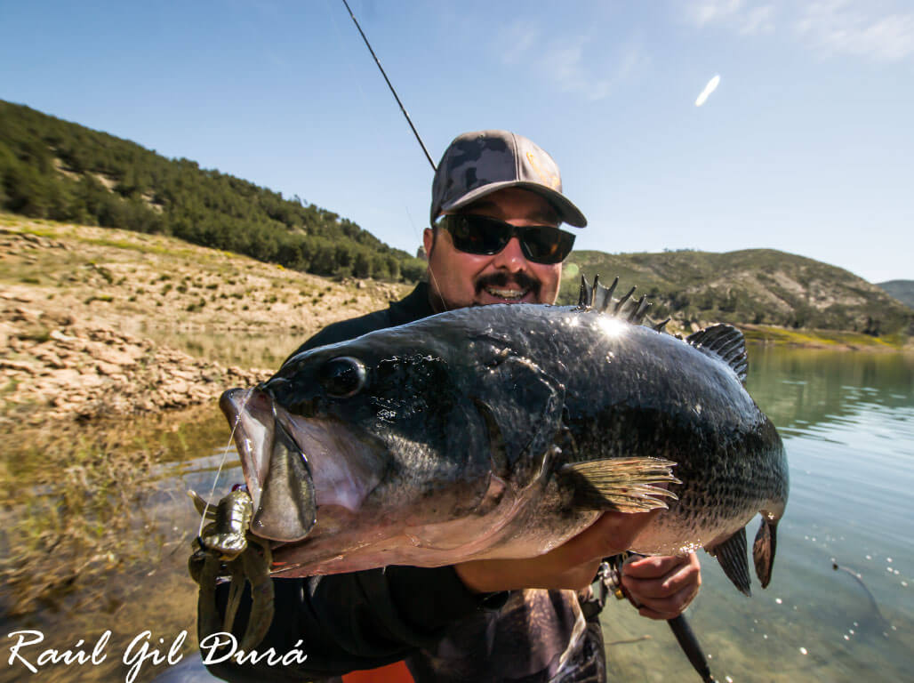 Raúl Gil esteve com a Go Fishing