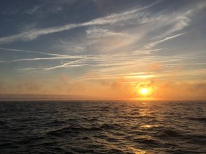 Gostaria de ir à Pesca?