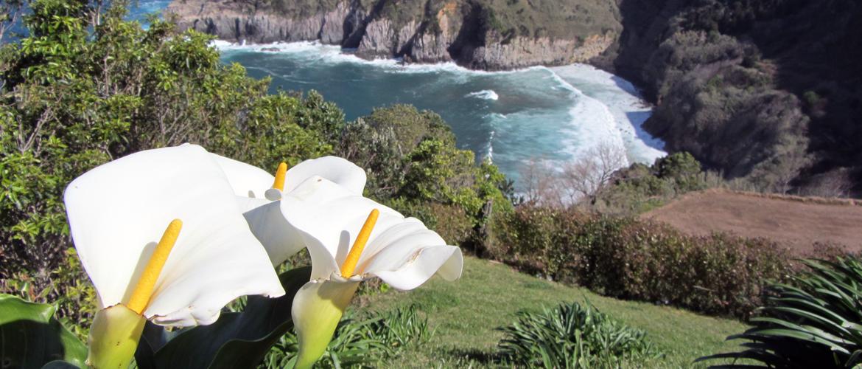 Miradouro Santa iria, Açores