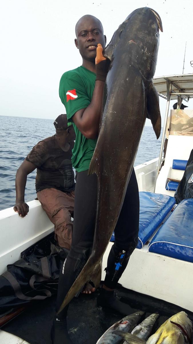 Mergulhar no Senegal