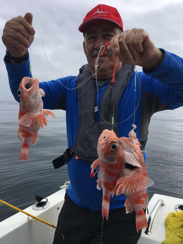 Pesca profunda - Go Fishing