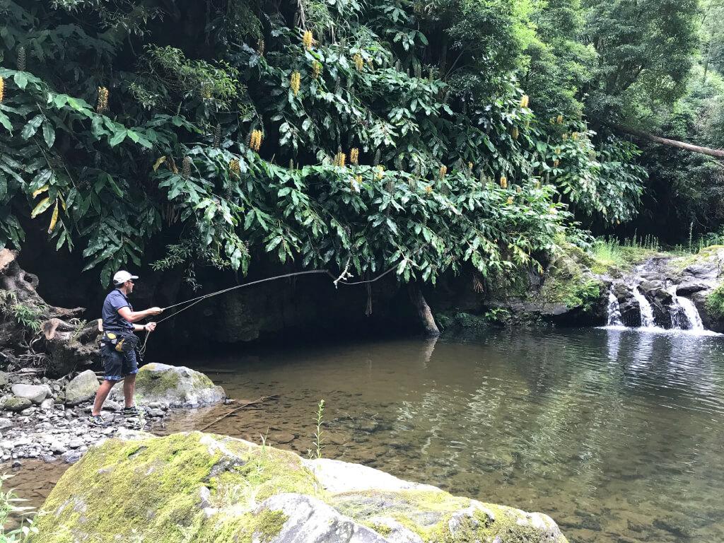 A pescar num paraíso