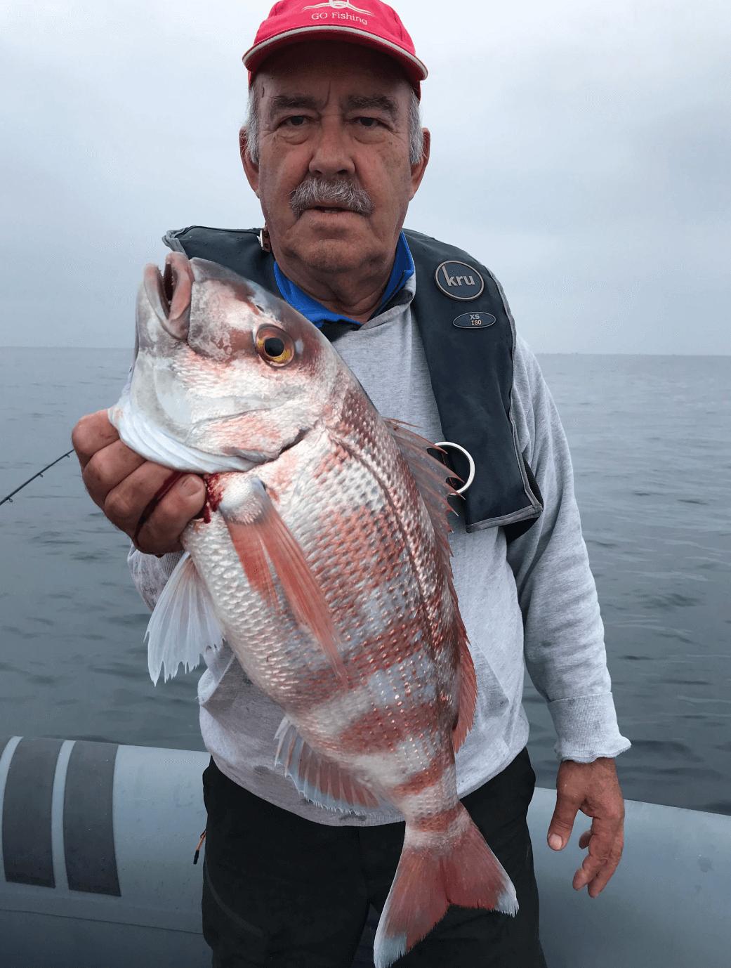 Pesca aos pargos