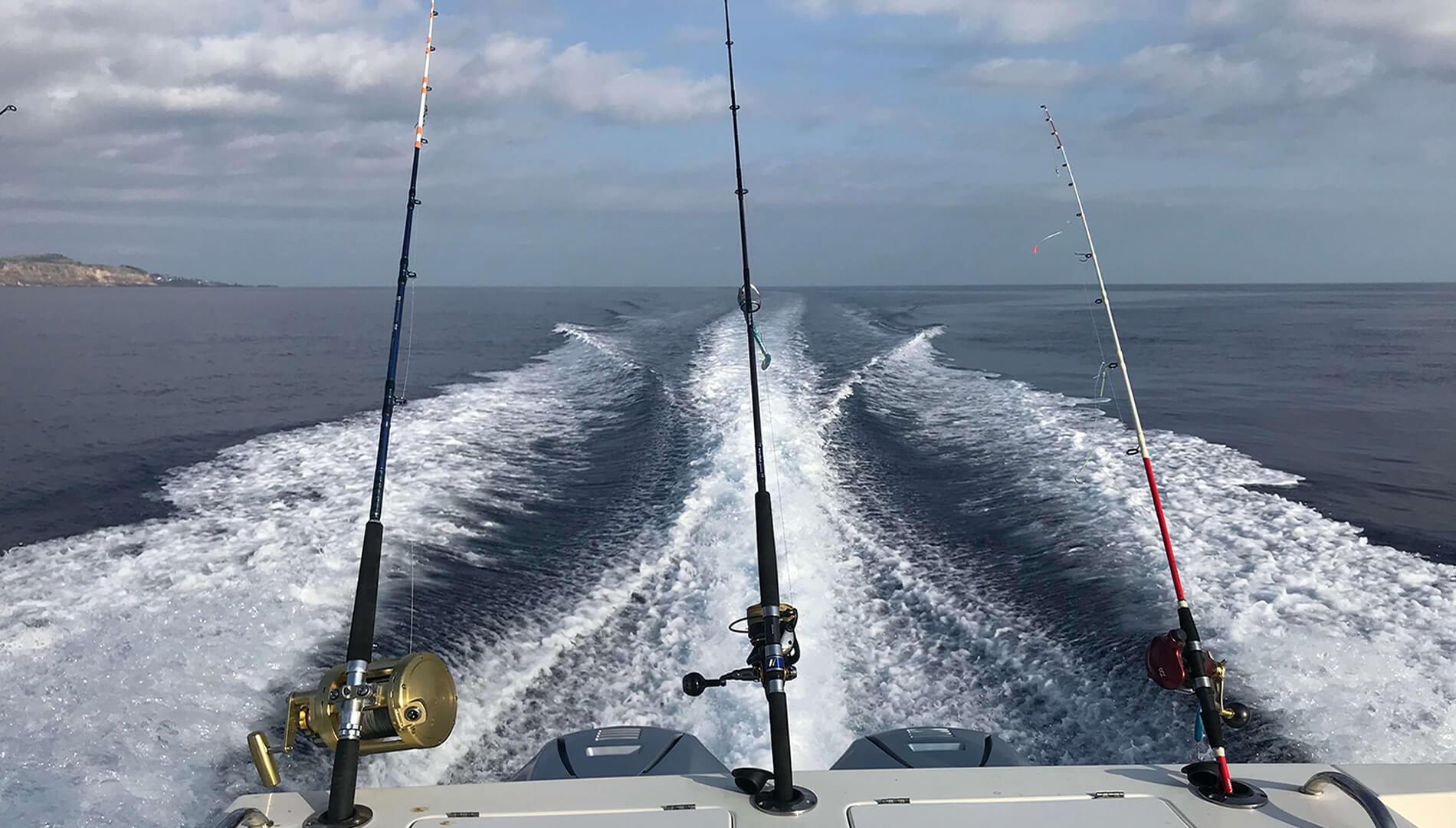 Saída de pesca, canas de pesca, loja de pesca, as melhores marcas, daiwa, shimano, deepliner, xesta, tict...